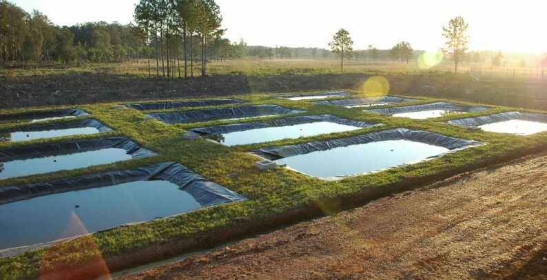 Tipos de tanque para piscicultura veja as diferen as for Tanques para cria de tilapia